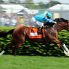 Get Stormy winning the Woodford Reserve Turf Classic on Derby day 2011.<br /> Dave Harmon Photo