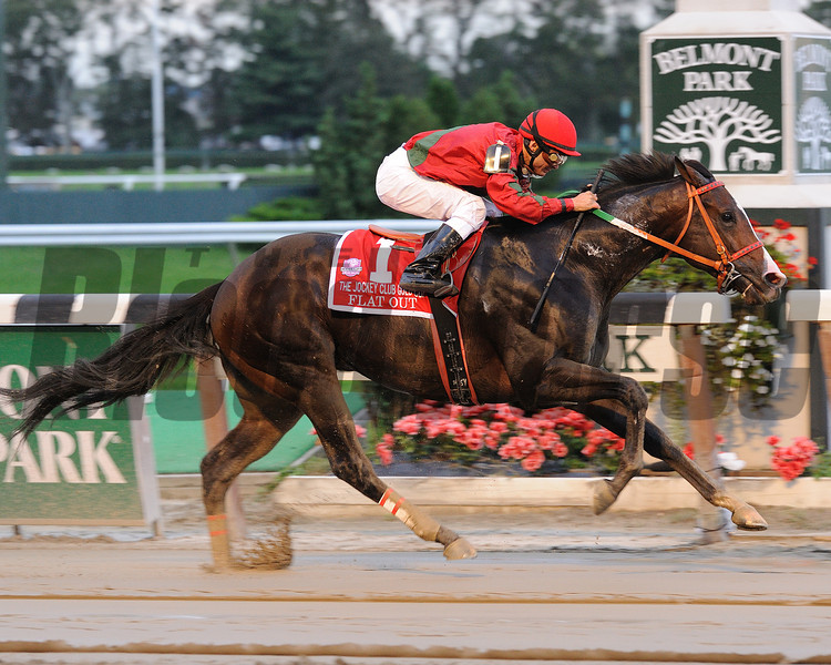 Flat Out 2011 Jockey Club Gold Cup<br /> Coglianese Photos