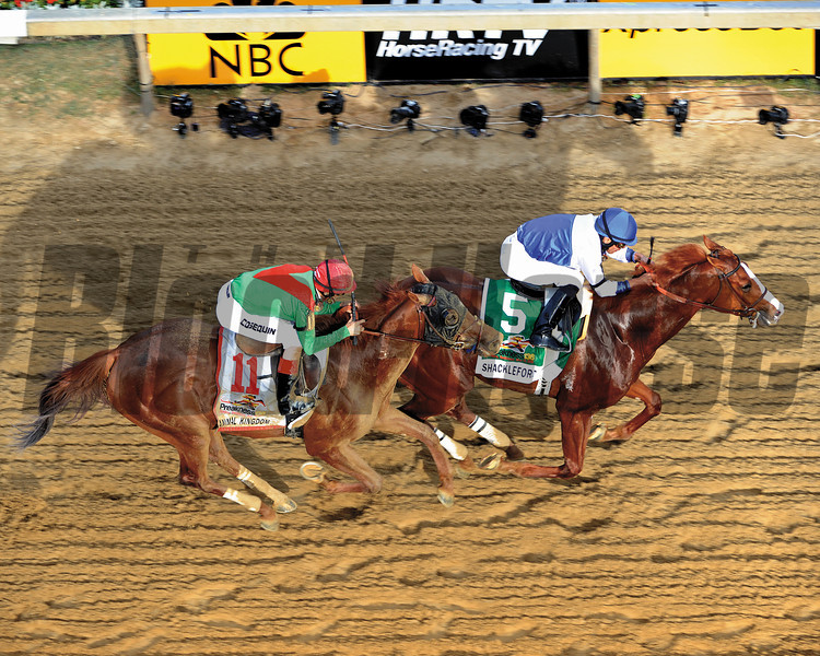 Shackleford beat Animal Kingdom to the wire to win the 136th Running of the Preakness Stakes at Pimlico on May 21, 2011.