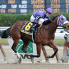 The Funky Express wins the New York Stallion Series S. 11/13/2011<br /> Coglianese Photos