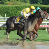 Quick Wit wins the 2012 National Museum of Racing Hall of Fame Stakes<br /> Photo by Coglianese Photos