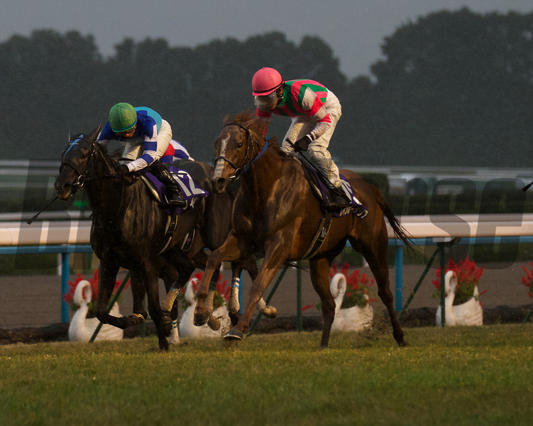 Rainbow Dahlia (Brian's Time x Arome, Northern Taste) upsets Verxina in the Diamond Jubilee renewal of the Queen Elizabeth II Cup at Kyoto Racecourse on November 11th, 2012.