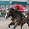 Indiano wins the 2012 Mr. Prospector.<br /> Coglianese Photos/Kenny Martin
