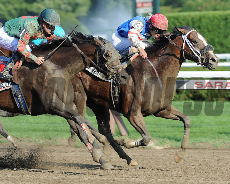 C C's Pal wins the 2012 Honorable Miss<br /> Photo by Coglianese Photos