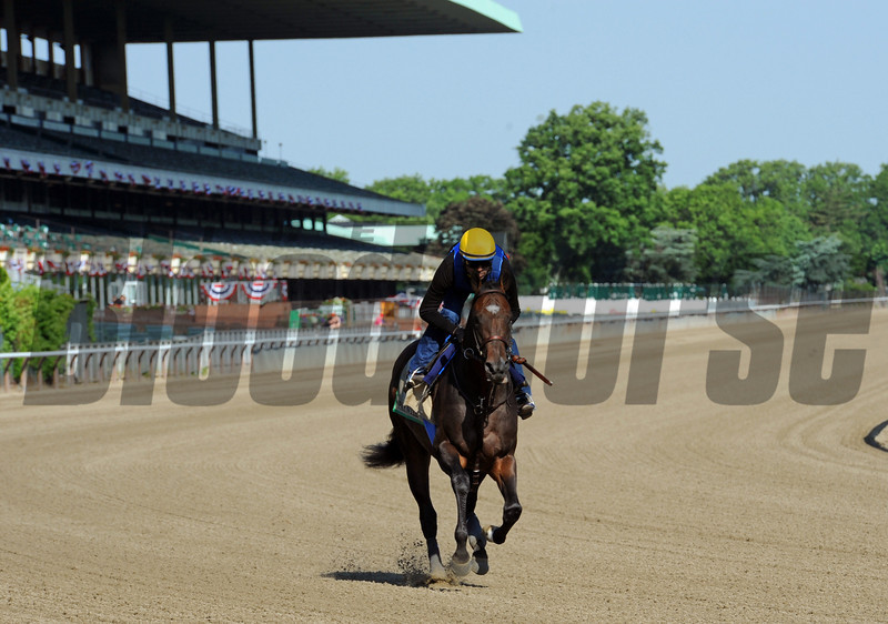 Bob Baffert trainee Paynter, has Belmont Park all to himself Friday morning June 1st...<br /> © 2012 Rick Samuels/The Blood-Horse
