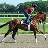 Kentucky Derby third place finisher Dullahan, stretches his legs Friday morning, June 1st, at Belmont...<br /> © 2012 Rick Samuels/The Blood-Horse