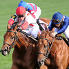 Balance the Books, Julian Leparoux up, (outside) wins the Bourbon Stakes, Keeneland Race Track, Lexington, KY 10/7/12 photo by Mathea Kelley