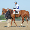 Shackleford after winning the Met Mile.<br /> <br /> Photo by Coglianese Photos