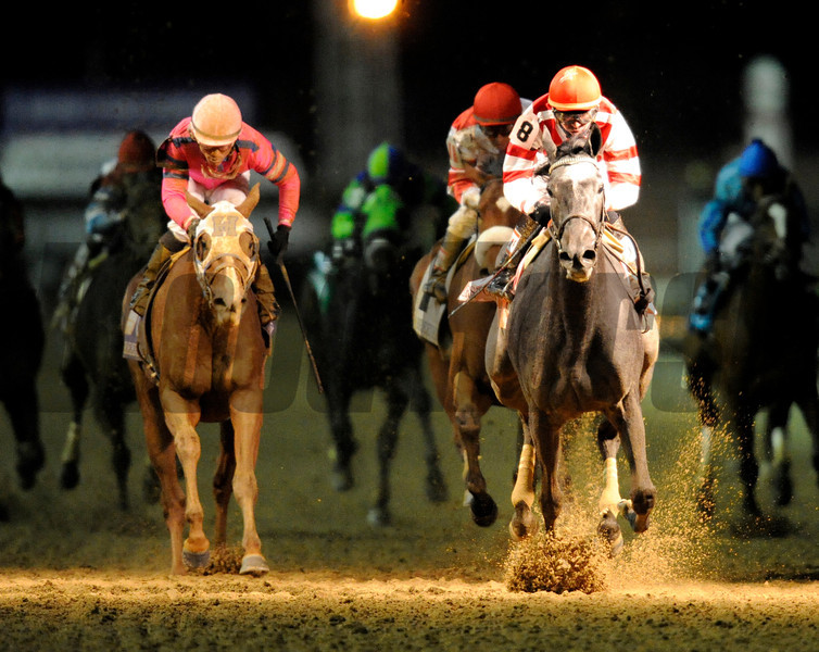 Unrivaled Belle (right), Kent Desormeaux holds off Blind Luck to win the Breeders' Cup Ladies Classic at Churchill Downs<br /> Photo by Rick Samuels