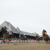 Contested wins the 2012 Test.<br /> Coglianese Photos