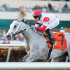 Starsilhouette wins the 2012 Claiming Crown Tiara.<br /> Coglianese Photos/Courtney Stafford