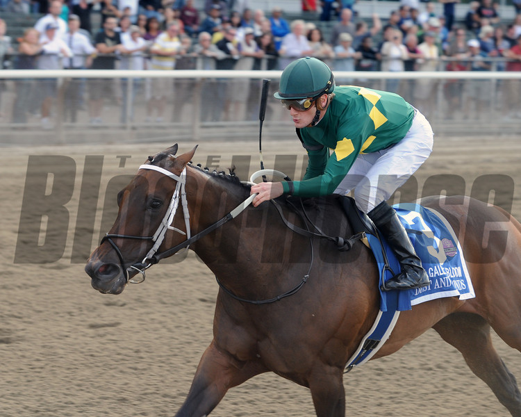 Dust and Diamonds wins the 2012 Gallant Bloom.<br /> Coglianese Photos/Jessica Hansen