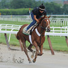 I'll Have Another - Belmont Park June 2, 2012<br /> Coglianese Photos