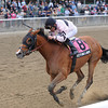 Afleeting Lady wins the 2012 Turnback the Alarm.<br /> Coglianese Photos/Jessica Hansen