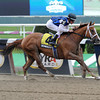 Derwins Star wins the Bed o' Roses Handicap<br /> Photo by Coglianese Photos
