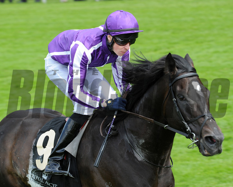 Royal Ascot 2012, 6/20/12, So you think, Joseph O'brien up wins the Prince of Wales Stakes, photo by Mathea Kelley Ascot Race Course;