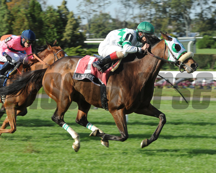 La Cloche wins the 2012 Athenia Stakes.<br /> Coglianese Photos