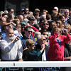 Fans Keeneland Race Track, Lexington, KY 10/6/12 photo by Mathea Kelley