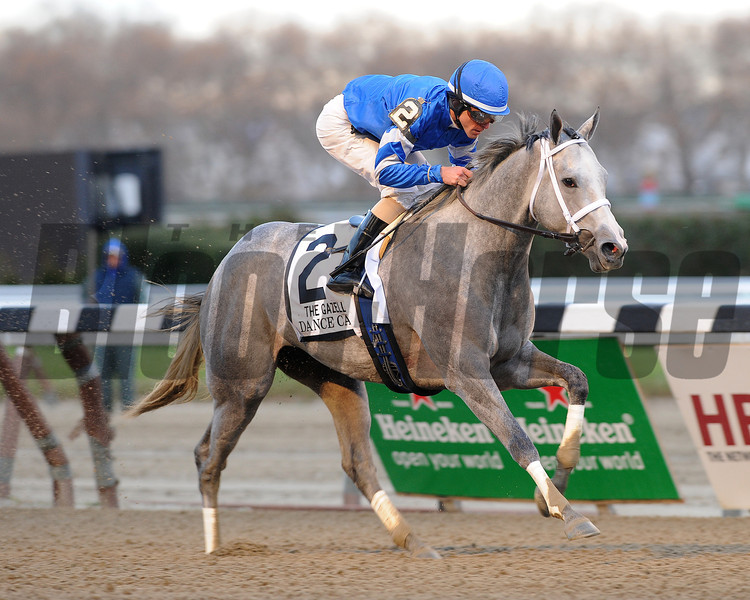 Dance Card wins the 2012 Gazelle.<br /> Coglianese Photos/Jessica Hansen