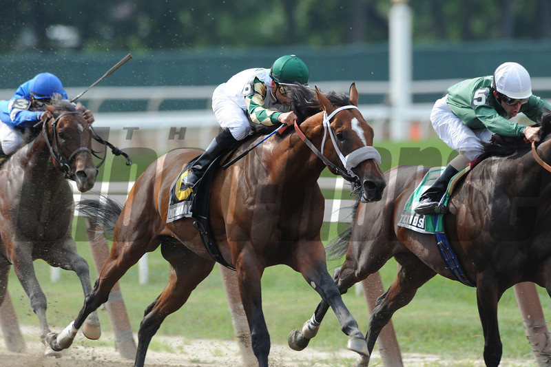 Mucho Macho Man wins the 2012 Suburban<br /> Coglianese Photos