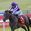 The Irish Derby, The Curragh 30/6/12.<br /> Camelot ( Centre ) ridden by Joseph O'Brien wins<br /> Photo by Trevor Jones