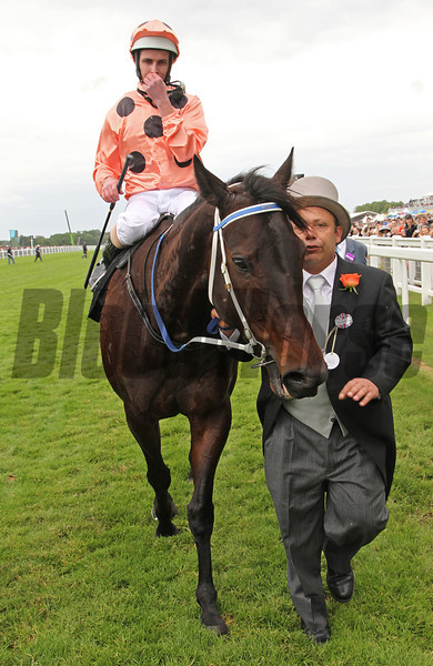 Jockey Luke Nolen after winning the Diamond Jubilee Stakes examines how close the win was.<br /> Photo by Trevor Jones