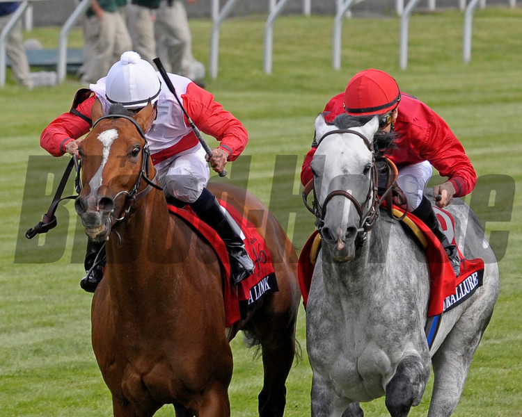 Caption:  Data Link, left, with Turallure second on right.<br /> Data Link with Alex  Solis up wins the Maker's 46 Mile (gr. IT) at Keeneland on April 13, 2012, in Lexington, Ky.<br /> Makers46Mile Origs1 image997<br /> PHoto by Anne M. Eberhardt