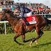 Racing from Doncaster, Racing Post Trophy 27/10/12.<br /> Kingsbarns ridden by Joseph Obrien wins .<br /> Photo by Trevor Jones.