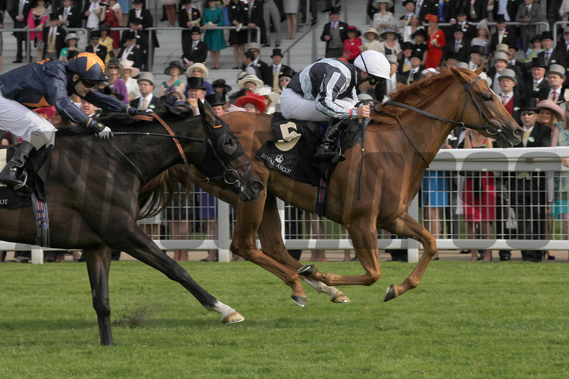 Duntle wins the Sandringham Handicap at Royal Ascot.<br /> Photo by Trevor Jones