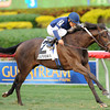 Mystic Love wins the 2012 Dania Beach.<br /> Coglianese Photos/Courtney Heeney