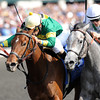 Silver Strike, Shaun Bridgmohan up, wins 2yr old Maiden, Keeneland Race Track; Lexington; KY 10/5/12 photo by Mathea Kelley