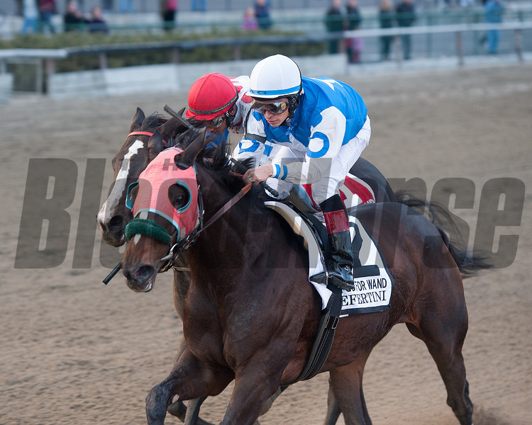 Nefertini wins the 2012 Go for Wand.<br /> Coglianese Photos