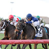 Mystic Love wins the 2012 Dania Beach.<br /> Coglianese Photos/Kenny Martin