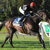 Boisterous wins the 2012 Knickerbocker<br /> Coglianese Photos