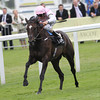 Royal Ascot 2012, 6/22/12, photo by Trevor Jones Ascot Race Course; Fallen for you, William Buick up, wins the Coronoation Stakes