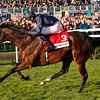 Racing from Doncaster, Racing Post Trophy 27/10/12.<br /> Kingsbarns ridden by Joseph Obrien wins<br /> Photo by Trevor Jones.