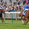 Racing from Newmarket. 13/10/12, The Dubai Dewhurst Stks.<br /> Dawn Approach wins from Leitir Mor.<br /> Photo by Trevor Jones