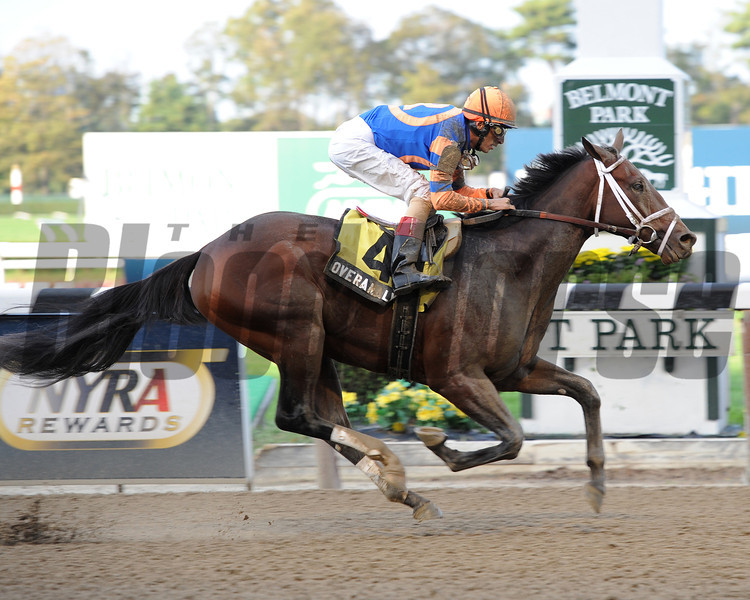 Overanalyze wins the Futurity Stakes.<br /> Photo by Coglianses Photos.
