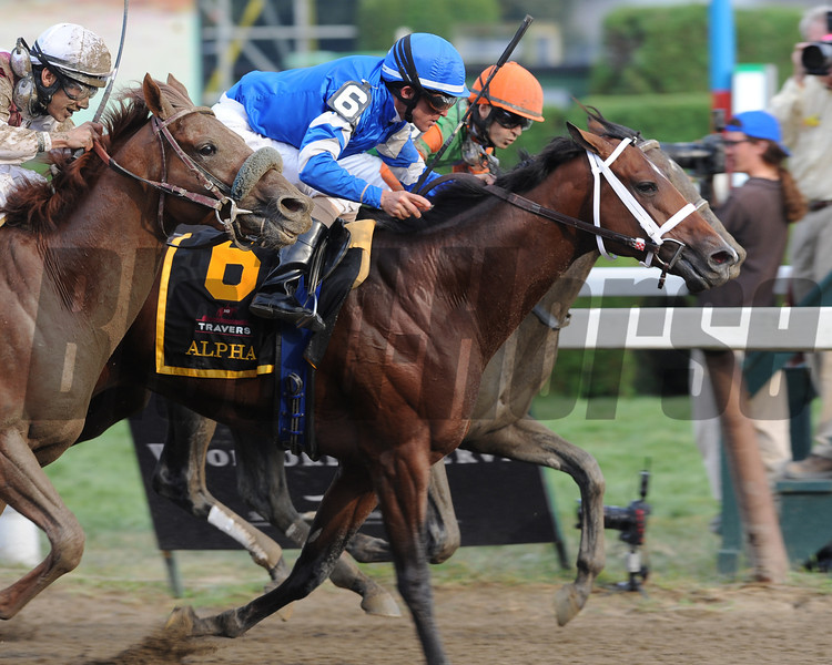 Alpha and Golden Ticket dead heat in the 2012 Travers.<br /> Coglianese Photo