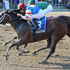 C C's Pal wins the 2012 Honorable Miss<br /> Coglianese Photos