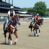 Guyana Star Dweej (L) and Atigun, at Belmont Friday morning June 1st...<br /> © 2012 Rick Samuels/The Blood-Horse