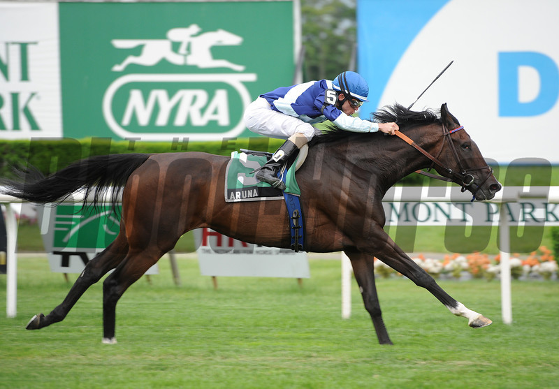 Aruna wins the 2012 Sheepshead Bay Stakes<br /> <br /> Photo by Coglianese Photos