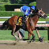 Questing wins the 2012 Alabama.<br /> Photo by Coglianese Photos/Susie Raisher
