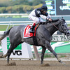 The Lumber Guy wins the 2012 Vosburgh.<br /> Coglianese Photos/David Alcosser