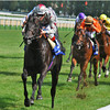 Dabirsim ridden by F. Dettori and trained by  C. Ferland, winning the Prix Morny Group 1 race  over 1,200 metres August 21.