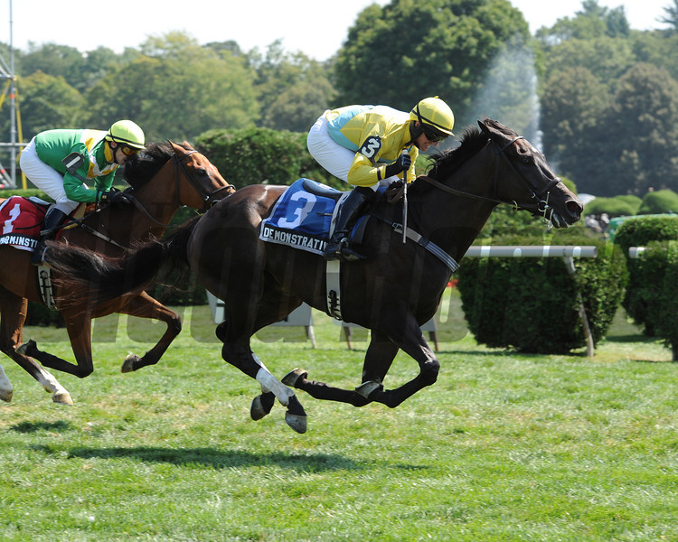 Demonstrative wins the 2012 New York Turf Writers Cup Steeplechase Handicap.<br /> Coglianese Photos