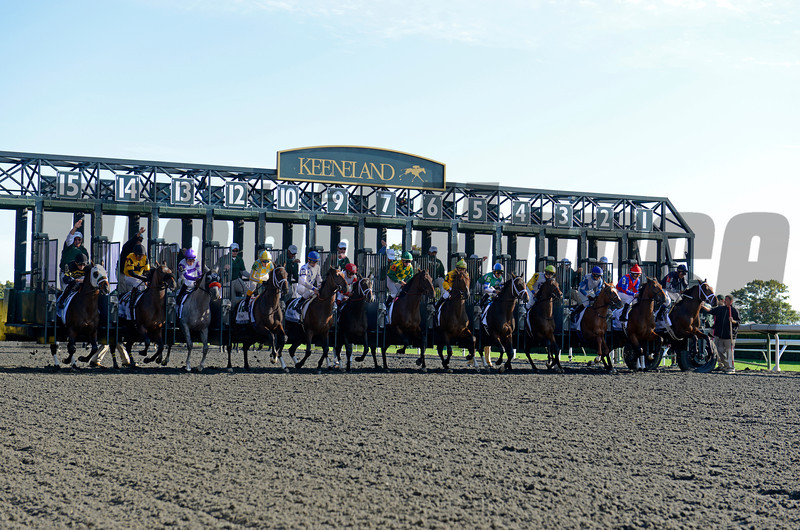 Caption: Joha with Rajiv Maragh breaks from gate 1 to win the Dixiana Breeders' Futurity (gr. I)<br />  at Keeneland on Oct. 6, 2012.<br /> Keeneland<br /> ShadwellTurfMile2  image 195<br /> Photo by Anne M. Eberhardt
