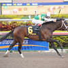 Dust and Diamonds wins the 2012 Sugar Swirl.<br /> Coglianese Photos/Leslie Martin