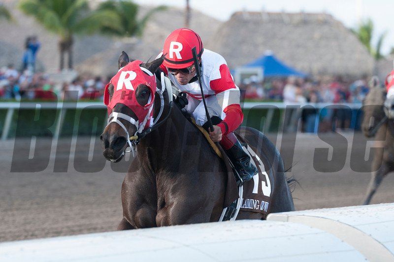 Bernie the Maestro wins the 2012 Claiming Crown Rapid Transit.<br /> Coglianese Photos/Courtney Stafford