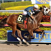 Starship Truffles wins the 2012 Claiming Crown Glass Slipper.<br /> Coglianese Photos